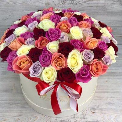 Доставка цветов и мягких игрушек по москве недорого купить цветы в кемерово цены