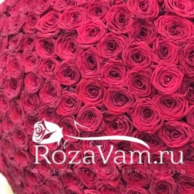 Букет из 301 красной розы ( 70см)