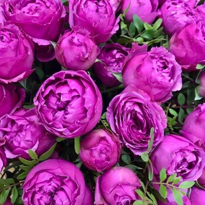Корзина  с пионовидными розами + зелень