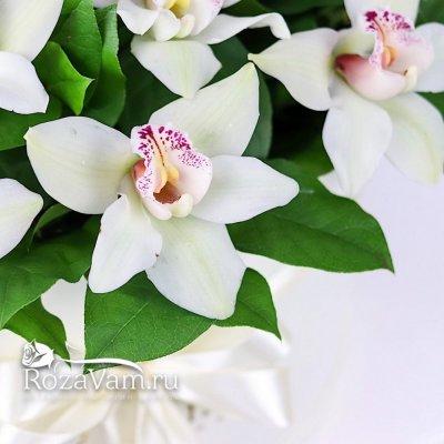 Шляпная коробка из 25 королевских орхидей