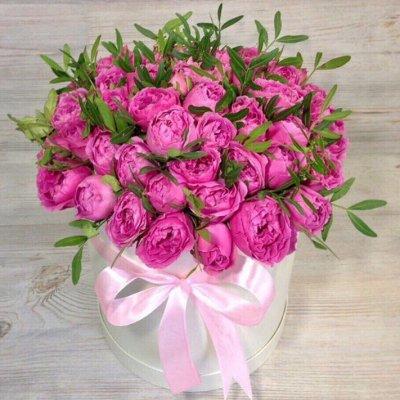 Купить розы в москве дешево по акции где купить цветы почтой