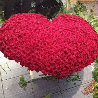 корзина из 501 красной розы сердце