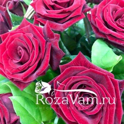 Корзина из 29 красных роз