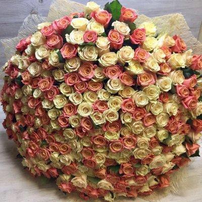 Букет из 301 микс розы ( 50см)