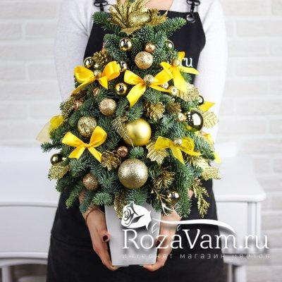 Новогодняя живая елка №1