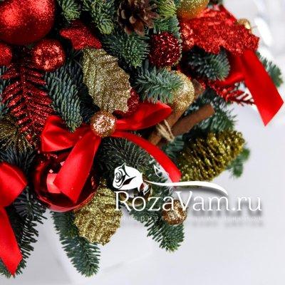 Новогодняя живая ель №2
