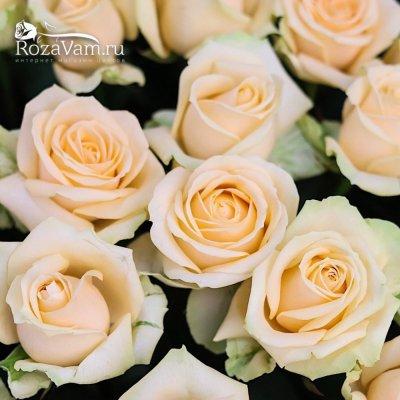 Корзина из 101 кремовой розы